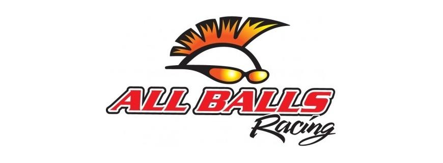 RETENES / REPARACIONES ALL BALLS